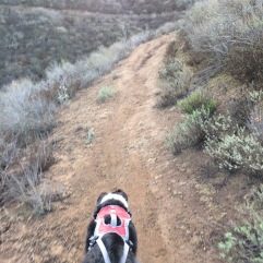 El Rincon Trail