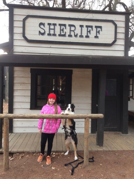 sheriff-12-21-16