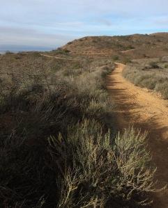 Vista del Mar Trail
