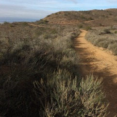 Vista del Mar Trail